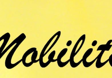 TRASFERIMENTI- MOBILITA' NAZIONALE ANNO 2017(Grad. Definitiva sett.2018)